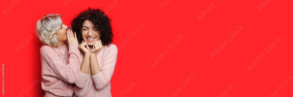 Fototapeta Blonde lady is whispering something to her curly haired friend while posing on a red wall with free space