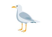 Seagull Bird Icon Vector. Seag...