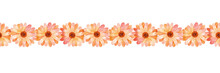 Hand-drawn Watercolor Floral Pattern. Orange Gerbera Ribbon. Gerber Daisy Seamless Pattern. Spring Flowers Border For Stickers, Website Design, Scrapbooking And Other Purposes.