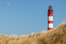 Lighthouse Of German North Sea...