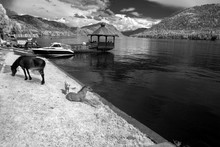 At Coast Teletskoe Lake,  Alta...