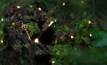 Vintage Golden Keys On Mysterious Forest Background. Magical Keys, Concept Secret Garden. Mystery Art Background. Copy Space