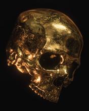 Gold Skull Isolated On Black Background