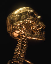 Gold Skull Isolated On Black Background