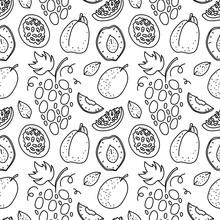 Fruit Hand Drawn Vector Pattern. Grape, Passionfruit, Plum, Nectarines