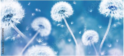 Photo Summer natural floral background