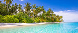 Fototapeta Fototapety z morzem do Twojej sypialni - Tropical beach background as summer landscape with white sand and coco palm trees close to calm sea for beach banner. Perfect beach scene vacation and summer holiday concept.
