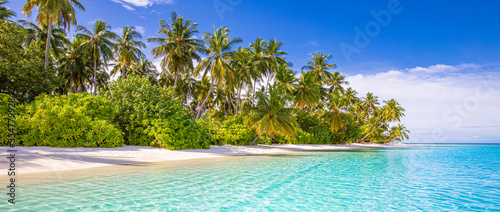 Fotografia Tropical beach background as summer landscape with white sand and coco palm trees close to calm sea for beach banner