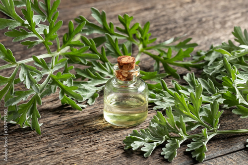A bottle of wormwood essential oil with fresh Artemisia Absinthium twigs Wallpaper Mural