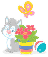 Little Grey Kitten Sitting Near A Beautiful Window Flower And Watching A Flittering Bright Butterfly, Vector Cartoon Illustration On A White Background