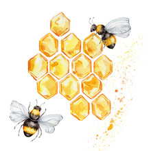 Two Bees And Honeycombs; Water...