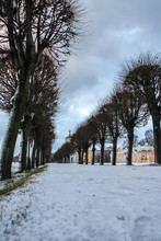 Tree Alley Along Manor Palace In Kuskovo In Winter, Moscow, Russia. Travel Around Russia In Winter Season, Blur And Grain Effect.