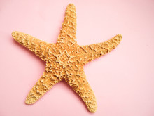 Starfish Isolated On Pink Past...