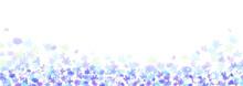 青い花のさわやかな背...