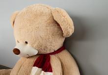 Big Teddy Bear In A Scarf, Sid...