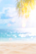 Leinwanddruck Bild - Blur beautiful nature green palm leaf on tropical beach with bokeh sun light wave abstract background.