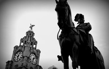 Black And White Horse Statue With Clock Building