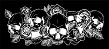 Skull And Roses In Black Background Vector Illustration