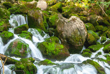 Close-up Pf Wonderful Tiers Of  Little Waterfall Motion With Rocks And Moss In Deep Forest  , Located In The North Of Spain, Catalonia.
