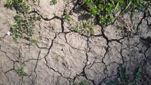 Drought, The Ground Cracks, No...