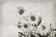 Old Photos, Retro, Vintage Image