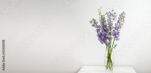 Stampa su Tela Delphinium Flower,  lilac, purple flower in a vase,  horizontal, side view, back