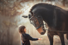 Little Girl With Horse At Summ...