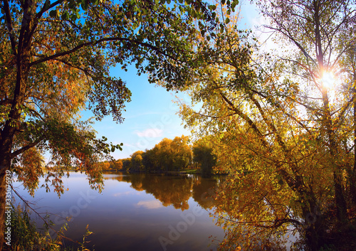Fototapety, obrazy: tree branches bending over the expanse of water. Reflection of blue sky in the lake.