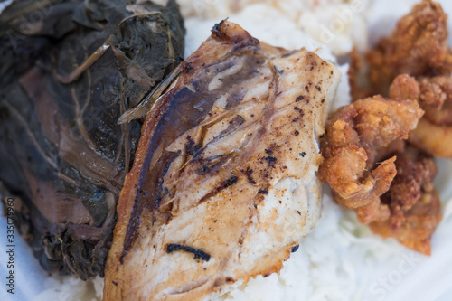 Fényképezés Kalua Pork lunch plate over rice - styrofoam clamshell