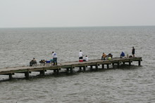Fishermen Fishing Off Of Pier In Gulf Of Mexico