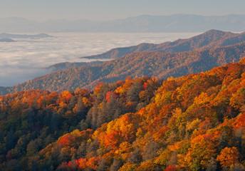 Fototapeta Drzewa Autumn landscape of the Smoky Mountains in fog, Deep Creek Overlook, Great Smoky Mountains National Park, North Carolina, USA