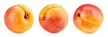 Collection Apricot. Apricot With Clipping Path Isolated On A White Background. Fresh Organic Apricot. Full Depth Of Field