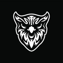 Wild Owl Head Logo Vector Mascot Design