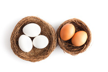 Two Nests With Eggs On White Background, Isolated