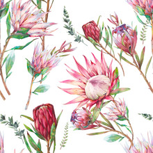 Protea Flowers Seamless Pattern.