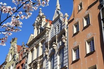 Gdansk city, Poland. Cherry blossoms spring time.