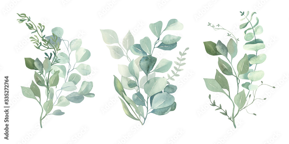 Fototapeta Watercolor green eucalyptus, olive  leaves. Watercolor floral illustration collection  - green leaf branches set for wedding stationary, wallpapers, background,  greetings.