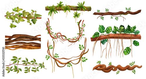 Jungle Liana Plants Set Canvas Print