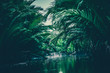 canvas print picture - natural green filter, tropical forest with lake
