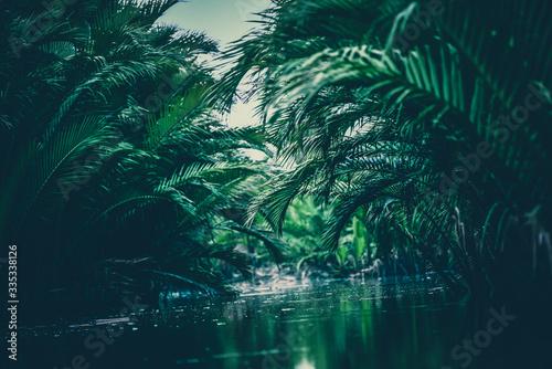 tropikalne-liscie-nad-woda