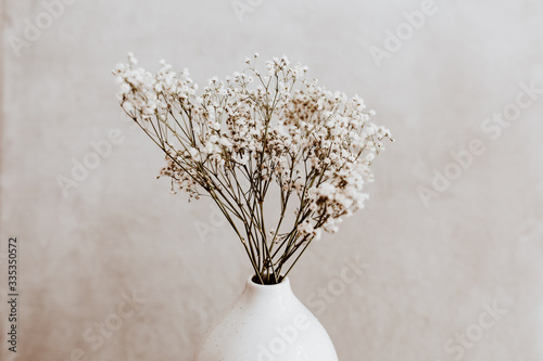 Fototapeta White wild dried flower in white ceramic vase closeup on grey background obraz