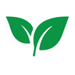 Leinwanddruck Bild - Green leaf ecology nature element icon, Leaf Icon, green leaf ecology nature element