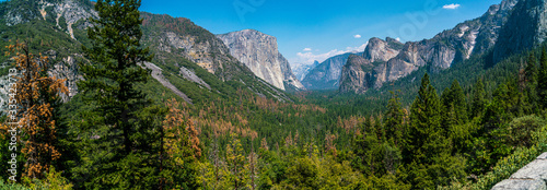 Yosemite Valley in the Summer time Canvas Print