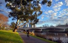 Bike Track On The Yarra River Melbourne