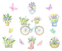 Butterflies, Bicycle, Planters...