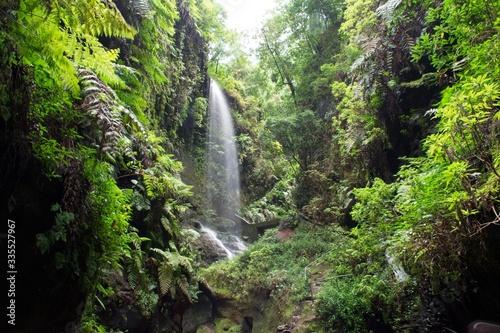 Photo Waterfall, Los Tilos, La Palma
