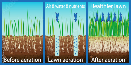 Aeration of the lawn Slika na platnu