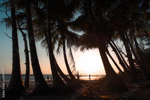 Photo atardecer en playa con las palmeras
