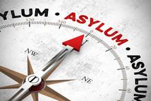 Word Asylum / Asylum On Compass