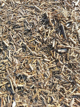 Background Of Pieces Of Dry Reeds.Small Dry Grass.Vegetation In Spring